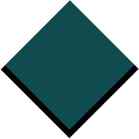 s119_evergreen_size-2_rgb.jpg