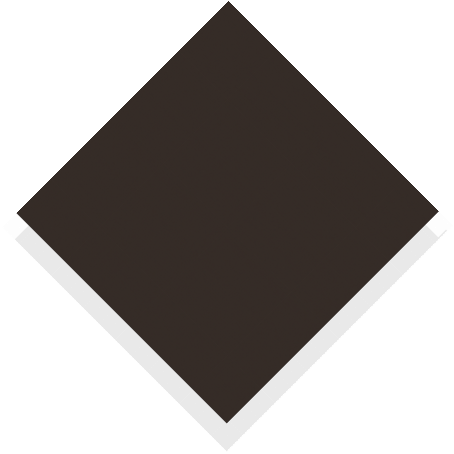 s100_coffee_brown.jpg