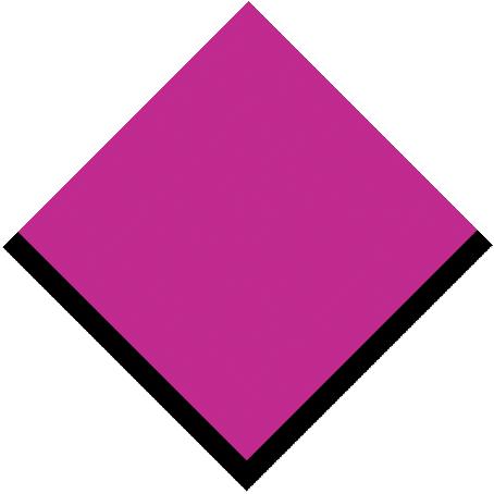 s116-festival_pink.jpg
